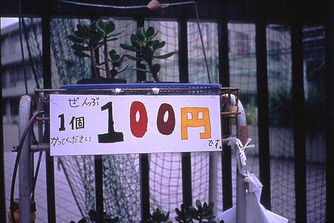 050901